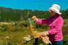Point Lobos 01