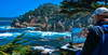 Point Lobos 03