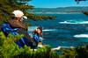 Point Lobos 12
