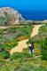 Point Lobos 15
