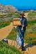 Point Lobos 16