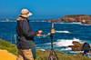 Point Lobos 17