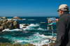 Point Lobos 22