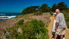 Point Lobos 25